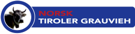 Logo - Norsk Tiroler Grauvieh